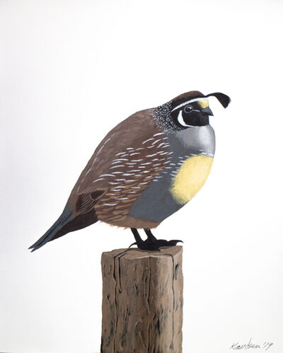 Mark Knudsen, 'California Quail', 2019