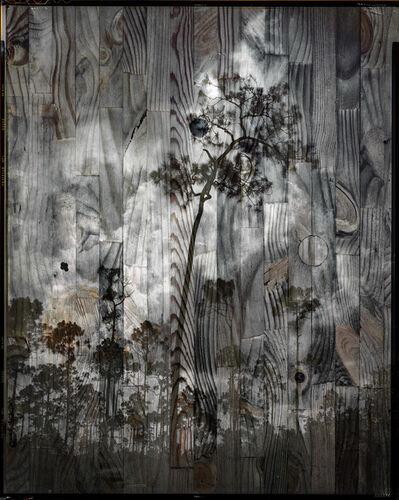Andrew Moore, 'Black Sun'