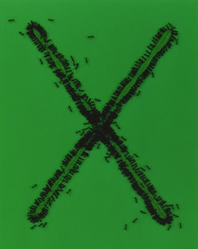 Anne Veraldi, 'Ants #37', 2001