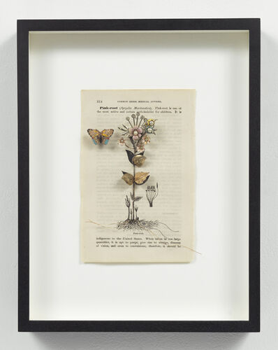 Eric Rhein, 'Medicinal Garden Series: Pink Root', 2005