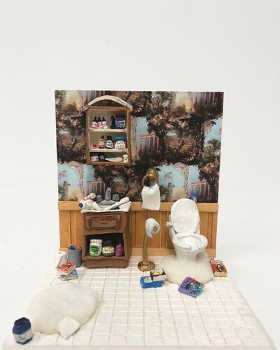 Jen Catron and Paul Outlaw, 'Child's Dollhouse #infowars (Alex Jones' Bathroom)', 2018