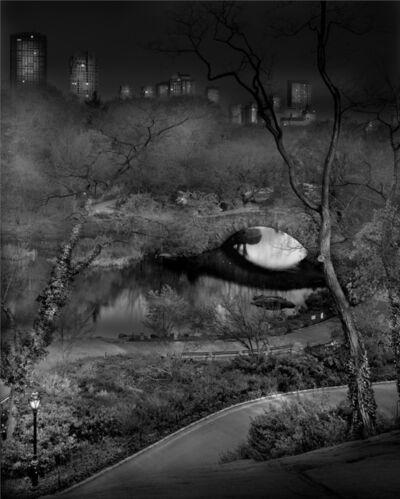 Michael Massaia, 'Deep in A Dream - Central Park - Fading Away', 2011