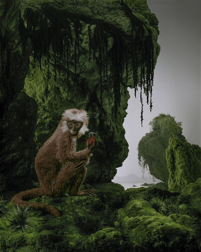 Didier Massard, 'Monkey', 2011