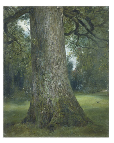 John Constable, 'Study of the Truck of an Elm Tree', ca. 1824