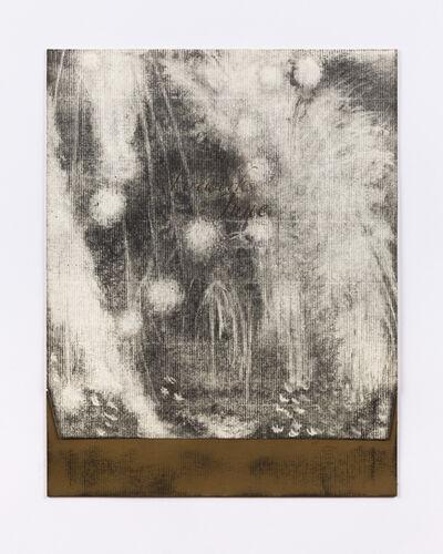 Lucas Reiner, 'Fireworks in June #4', 2005