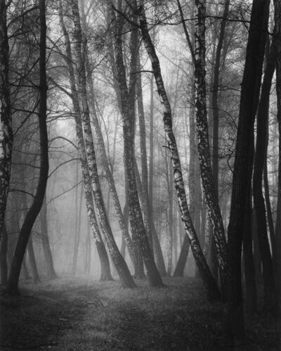 Roman Loranc, 'Walking in the Fog', 2016