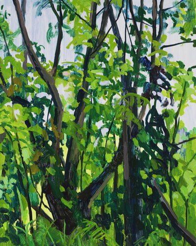 Claire Sherman, 'Trees and Vines', 2018