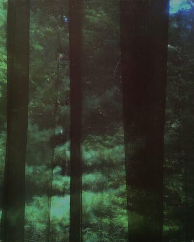 Motohiro Takeda, 'Untitled from Blink/Matataki', 2015