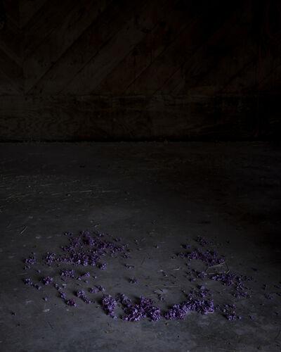 Cig Harvey, 'Ring of Lilacs', 2018