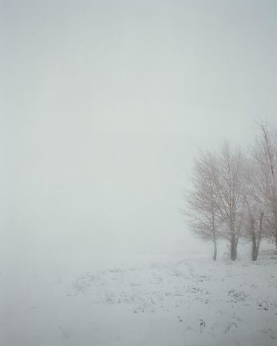 Todd Hido, 'Untitled 7412-8', 2008
