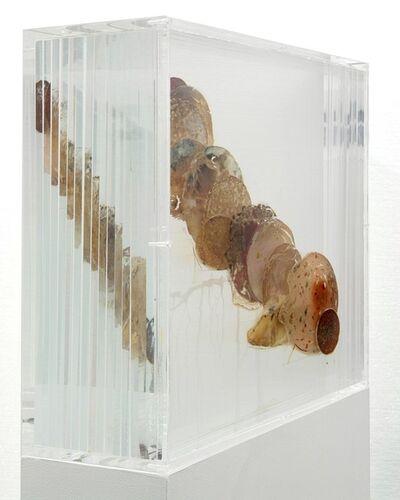 Tue Greenfort, 'Bio-Wurstwolke - After Dieter Roth 1969', 2007