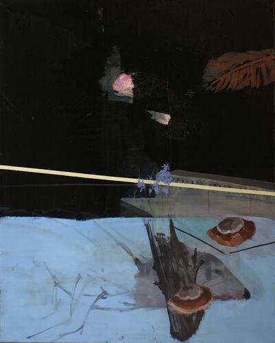 Patrícia Kaliczka, 'The mountain has fallen down', 2013