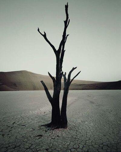 Jimmy Nelson, 'IV 473 - Dead Vlei, Sossusvlei Namibia', 2011