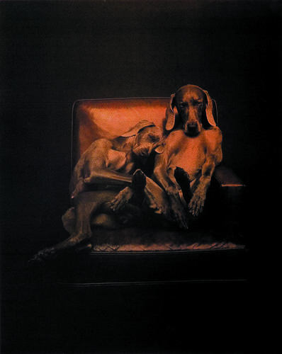 William Wegman, 'Best Buddies', 1993