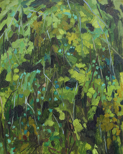 Claire Sherman, 'Moss and Ferns', 2017