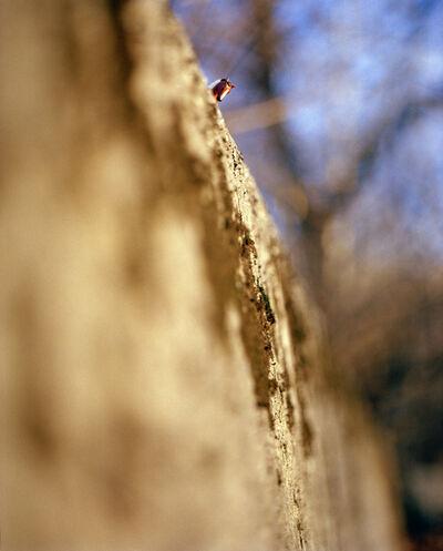 Susan Arthur Whitson, 'Horse On Ridge', 2006