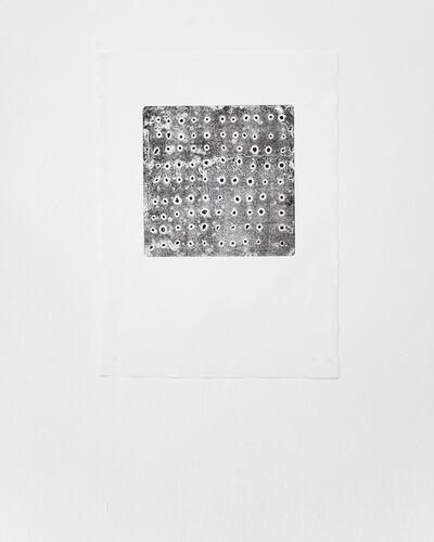 Sheroanawë Hakihiiwë, 'Tipikiwë', 2013