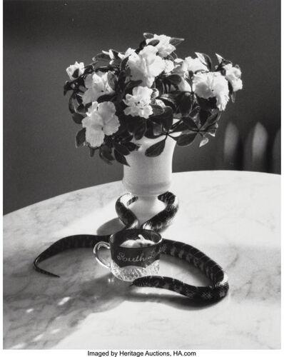 André Kertész, 'Still Life with Snake, New York', 1960