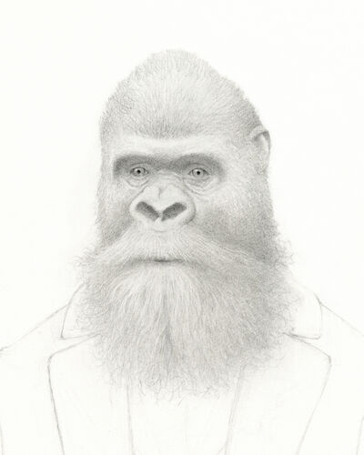 Travis Louie, 'Bearded Gorilla', 2016