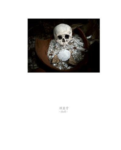 Osamu James Nakagawa, 'skull', 2001-2009