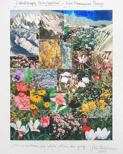 Peter Arthur Hutchinson, 'Landscape Comparative', 2001