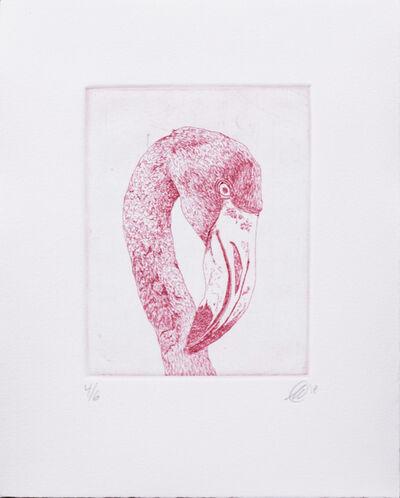 Scott Holford, 'Flamingo in Pink', 2018