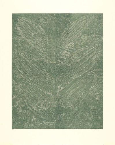 Franz Gertsch, 'Gelber Enzian (olive)', 2003