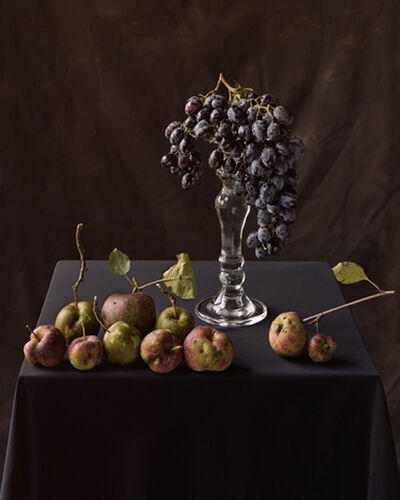 Tom Baril, 'Apples and Grapes (833)', 2006