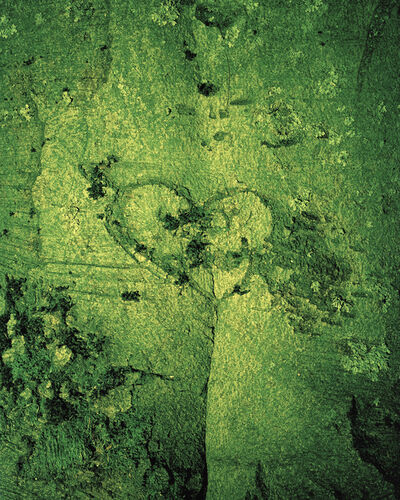 Eirik Johnson, 'GREEN VALENTINE', 2012
