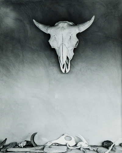 Todd Webb, 'Cow Skull and Bones on Portal at Georgia O'Keeffe's Ghost Ranch House, New Mexico', 1960