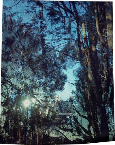 John Chiara, 'John F. Shelly Drive: Wayland Street: Jerry Garcia Amphitheater', 2019