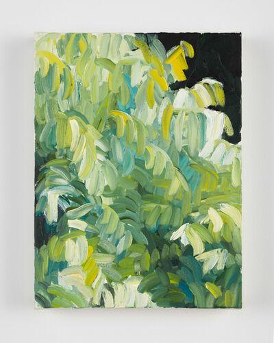 Cynthia Daignault, 'Window, Ash', 2015