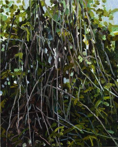 Claire Sherman, 'Vines ', 2018