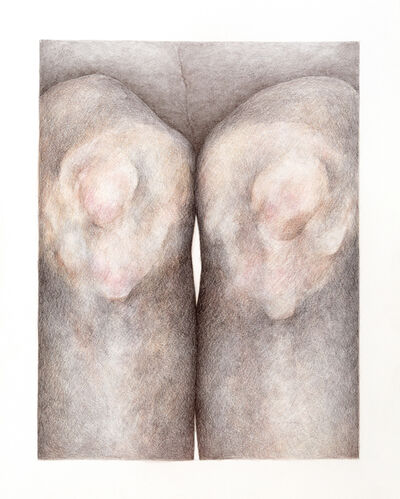 Katarina Riesing, 'Knobs', 2020