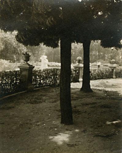 André Kertész, 'Untitled, September 1, 1919 (Trees and Garden)', 1919/1919