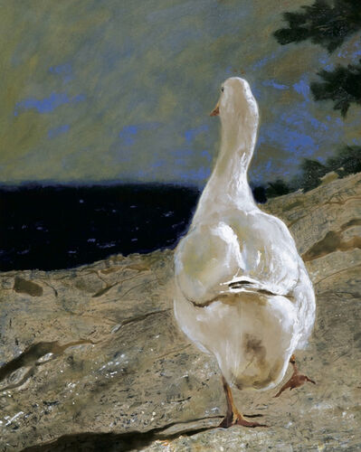 Jamie Wyeth, 'Off Shore Goose', 1994