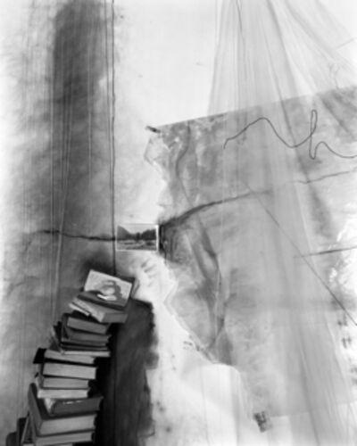 Lauren Semivan, 'Archive', 2013