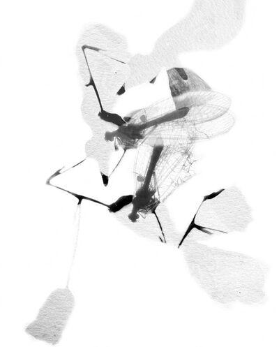 Stefania Ricci, 'Insieme Naturale 094', 2005