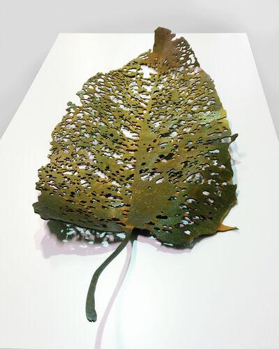 Saad Qureshi, 'Silent Leaf ', 2015