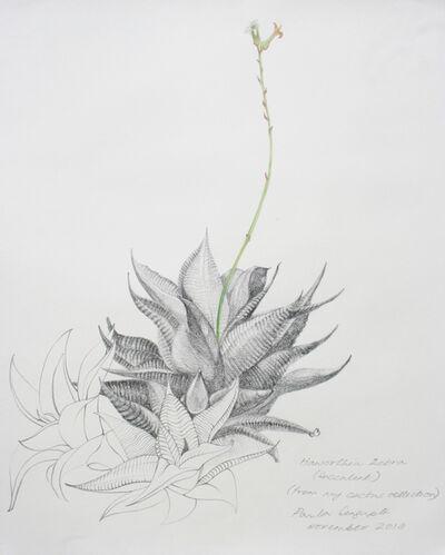 Paula Sengupta, 'The garden of unreason - The cactus drawing', 2018