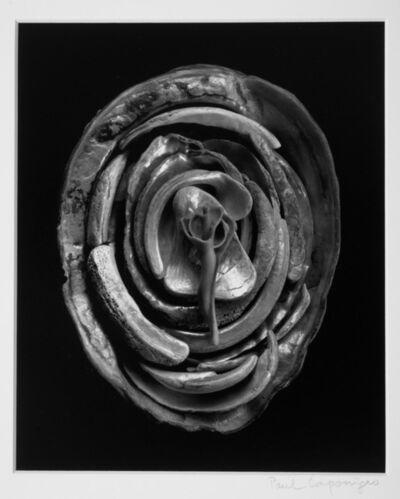 Paul Caponigro, 'Enfoldment #2, 1999', 1999