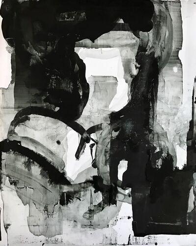 Eric Blum, 'Untitled Nº102916', 2016
