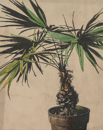 Frank Wilcox, 'Potted Palm Tree', ca. 1908
