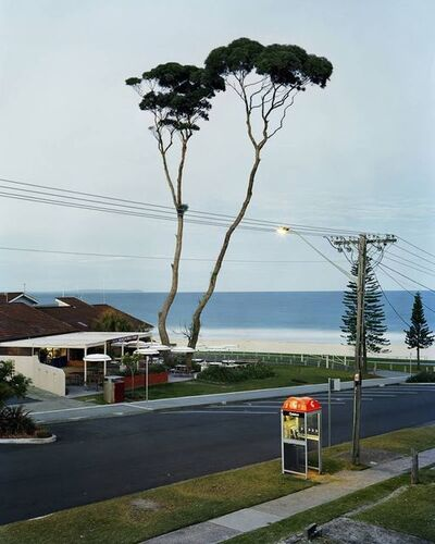 Amy Stein and Stacy Arezou Mehrfar, 'Two Tall Trees, Mollymook', 2010
