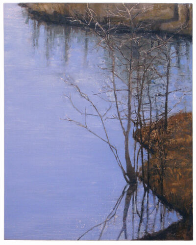 Daniel Bodner, 'Pond Reflection 1', 2011