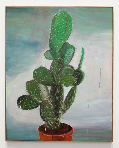 Anna Bjerger, 'Dull/Cactus', 2018