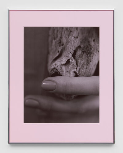 Josephine Pryde, 'Pacific Driftwood (Pink Lilac Filter)', 2014-2020