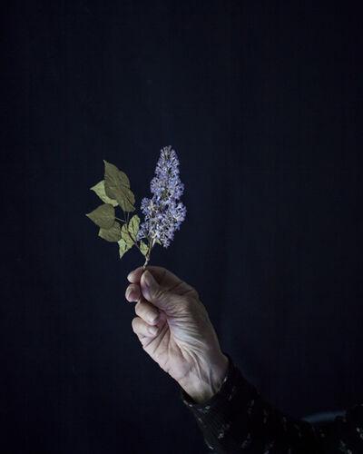 Cig Harvey, 'Mum Holding Pressed Lilacs, Rockport, Maine', 2018