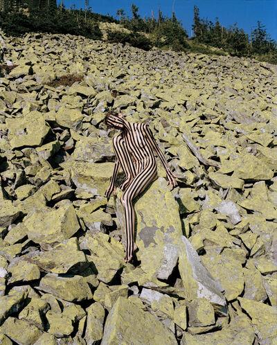 Synchrodogs, 'Untitled', 2018