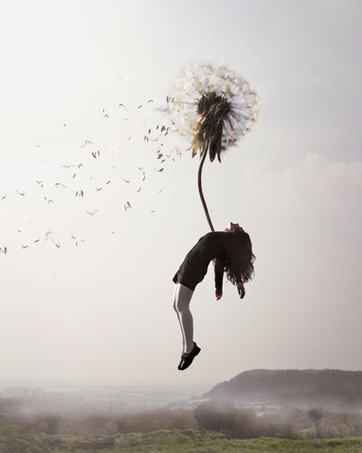 Maia Flore, 'Sleep Elevations V'